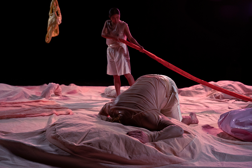 two dancers on a big circular pink drapery, touching the fabric with there body