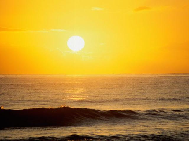 Sol-de-Playa_800