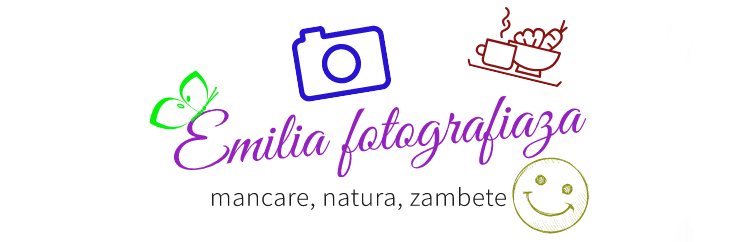 emiliafotografiaza