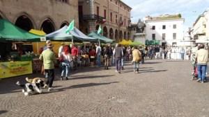 mercati in piazza scorsa edizione