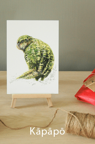 new zealand, illustration , bird , native , watercolor , ink , mixed media, kakapo