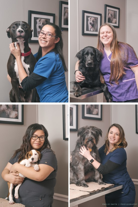 Pet photography and Business Portraits