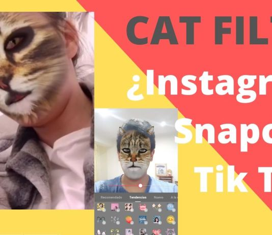 Cat filter instagram