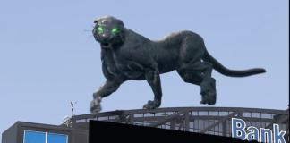 Carolina Panthers Pantera Virtual