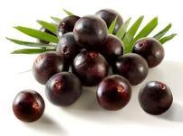 fruto del açaí
