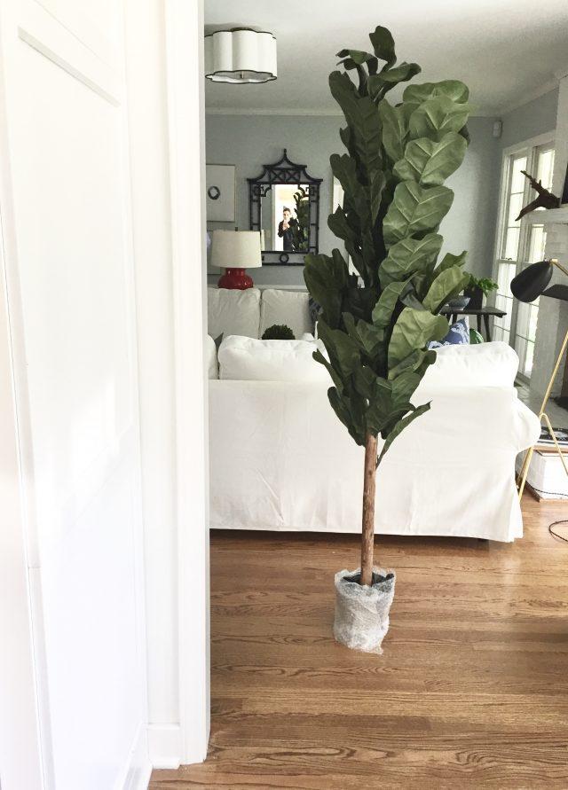 My Faux Fiddle Leaf Fig Tree  Emily A Clark