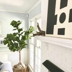 Living Room Tree Mirrors For Wall Fiddle Leaf Fig Emily A Clark