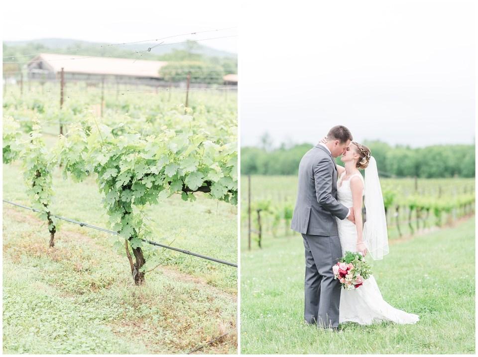 old-house-vineyards-wedding-photos-culpeper-virginia-wedding-photographer-photo-14_photos.jpg