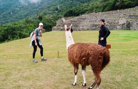 7 Tips For Hiking to Machu Picchu: What I Wish I Knew