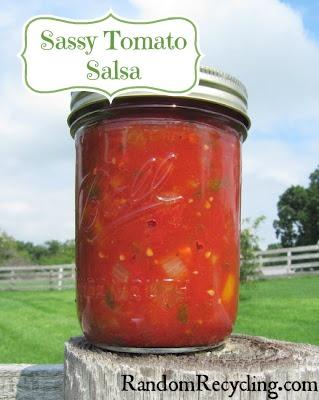 Sassy Tomato Salsa Recipe