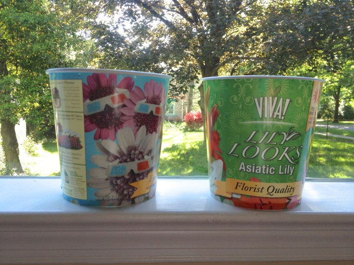 Recycle Flower Pot Project