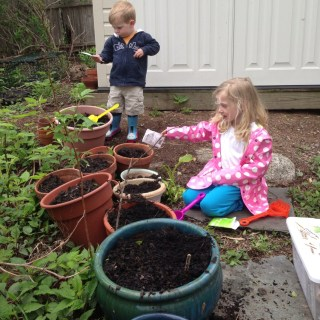 Gardening Plans: What to Plant and When