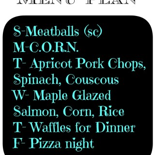 Monday Meal Plan Jan 20th