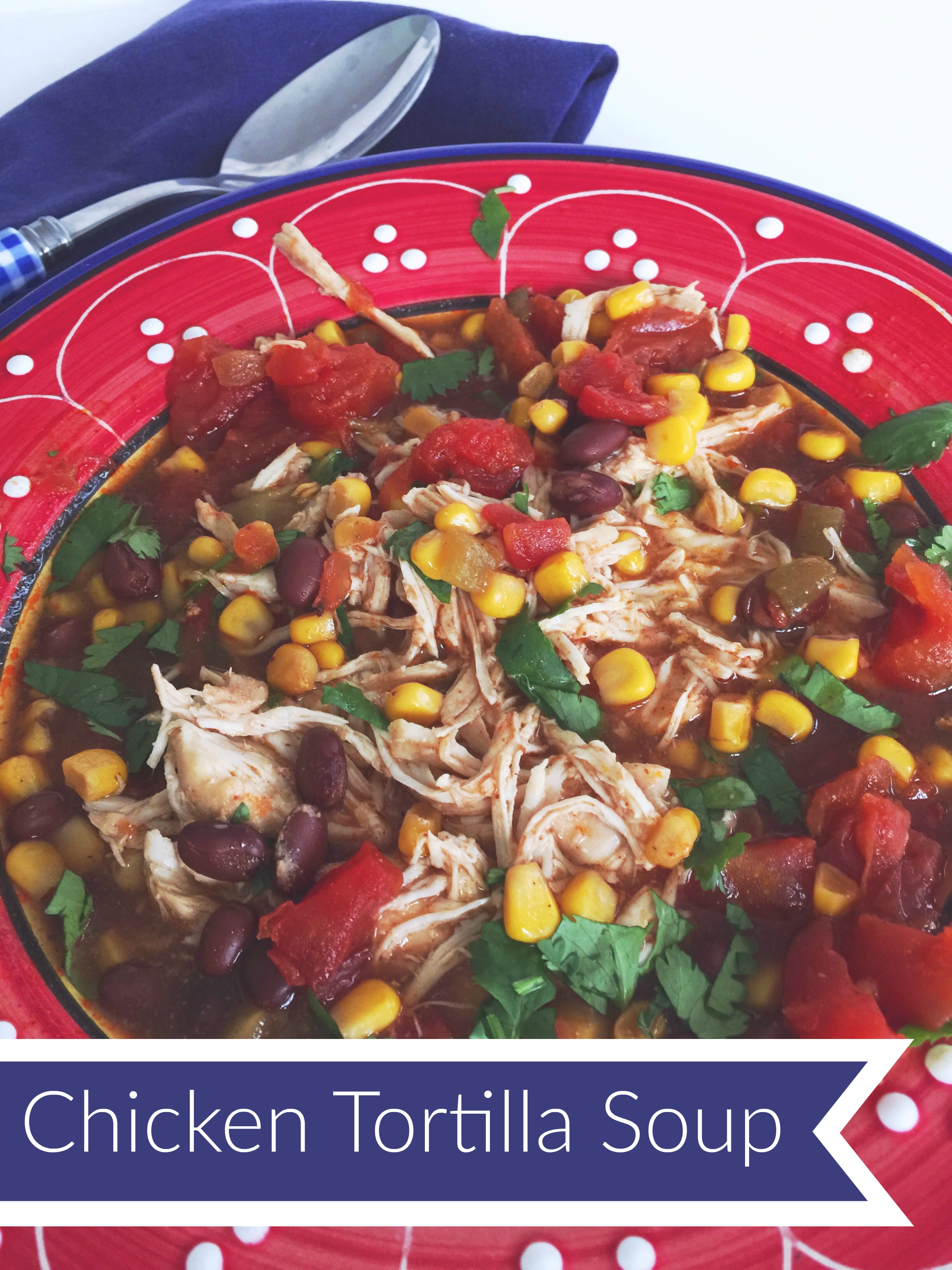 Chicken Tortilla Soup Recipe Favorite