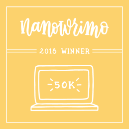 box that says Nanowrimo 2018 winner with sketch of computer and 50K
