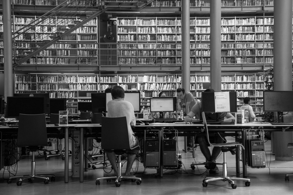 people reading at computers in a library