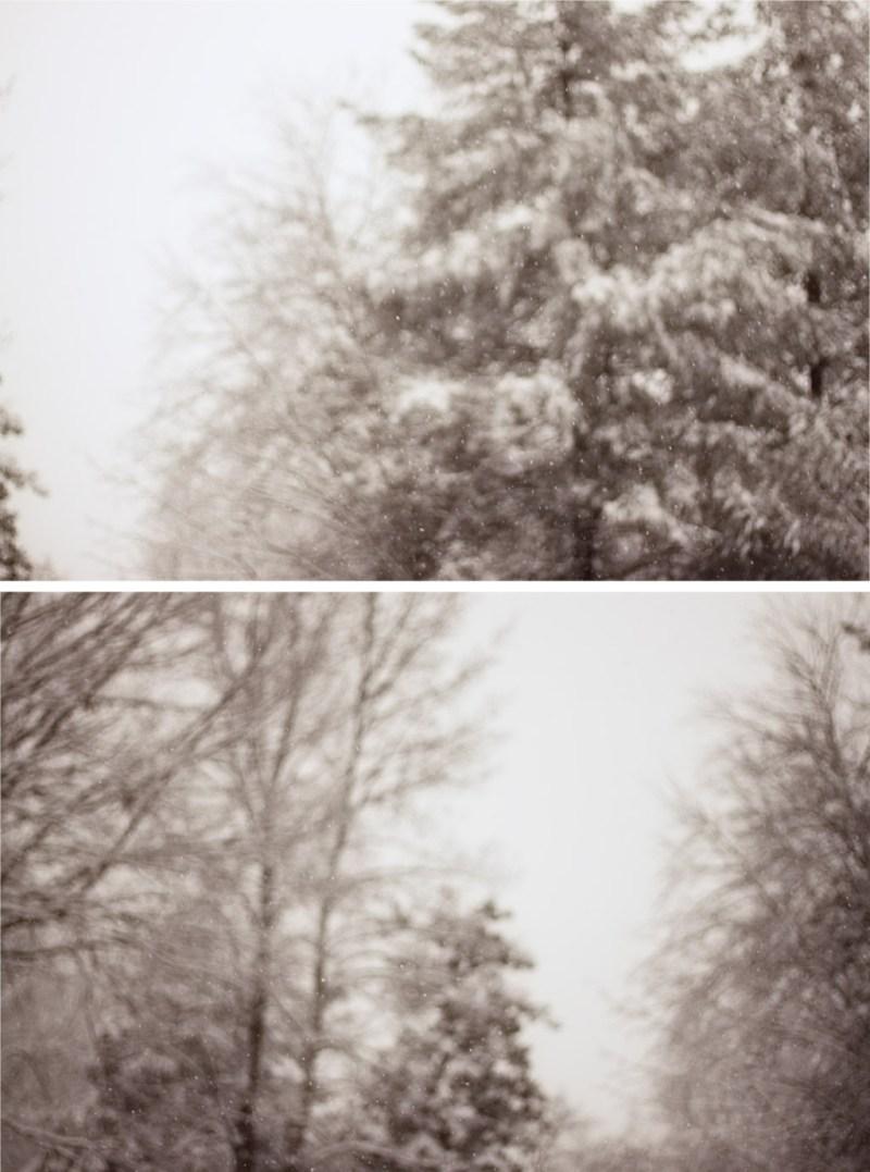 Snow Falling