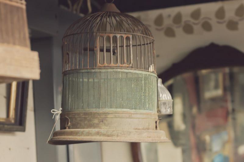 Old Birdcage