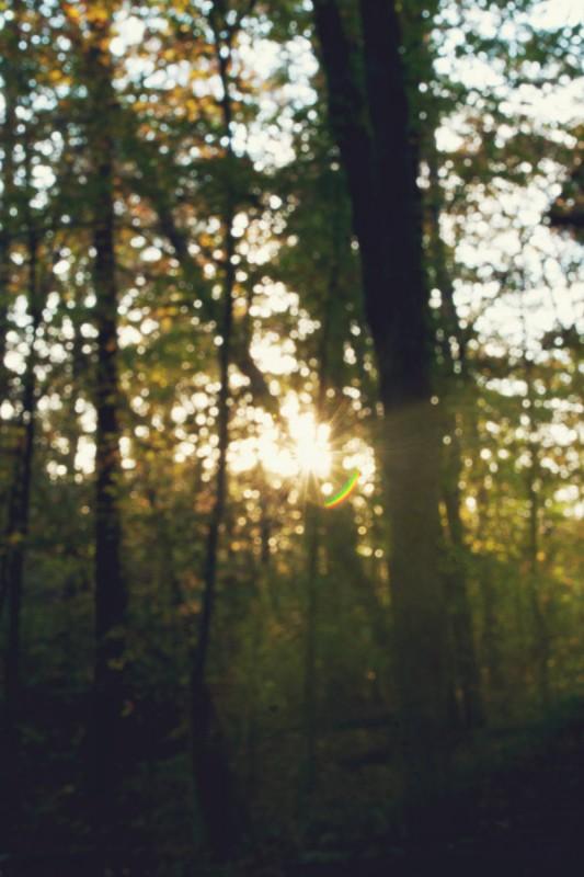 Sunset boken