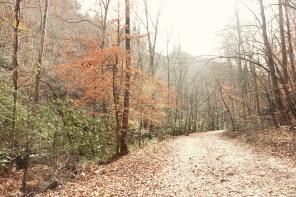 1114_trail
