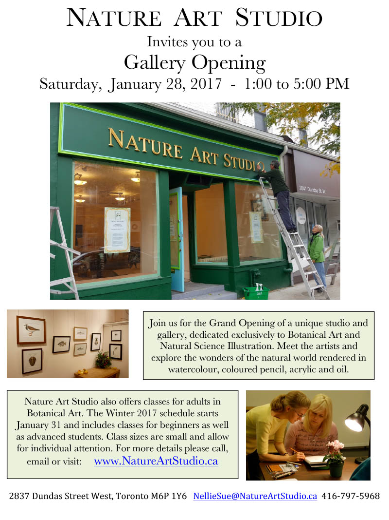 Nature Art Studio opening reception details