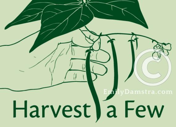 Harvest a Few illustration