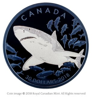 Great white shark silver coin
