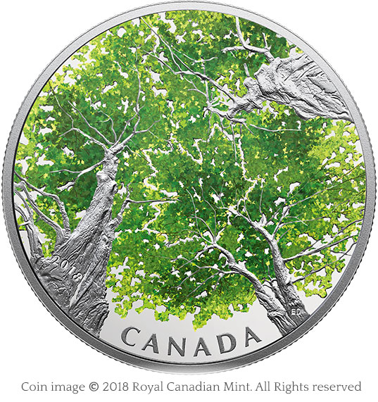 2 oz. Pure Silver Coin - Canadian Canopy: The Maple Leaf