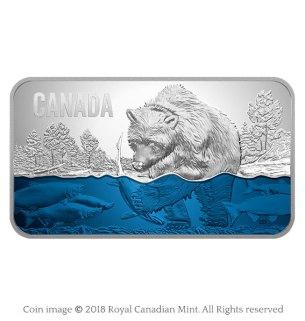 Salmon run rectangular silver coin