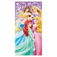Disney Princess Wall Art Best Of Disney Princess Group