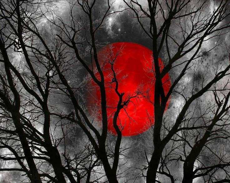 Black White And Red Wall Art New Black White Red Moon Tree Wall Art ...