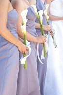Joe & Erica's Wedding, Poway, CA