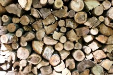A pile of wood lined up in front of the house.