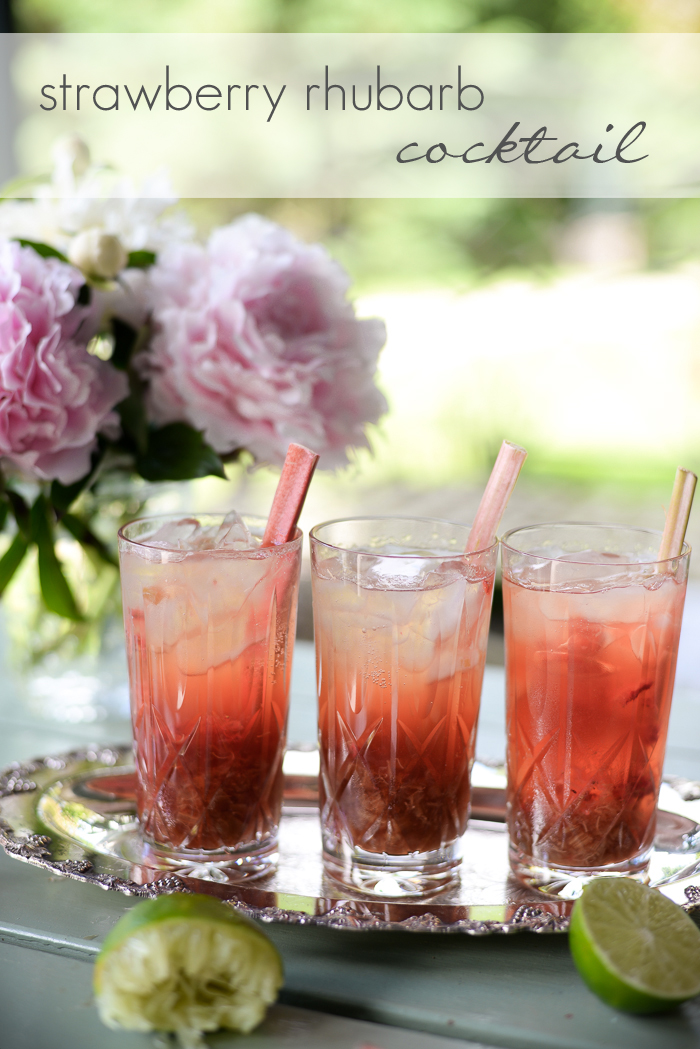 Strawberry rhubarb cocktail with rhubarab simple syrup and Campari