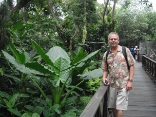 Scott on platform with greenery