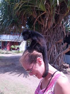 Baby monkey on Emily's head