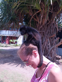 Baby monkey on Emily's head
