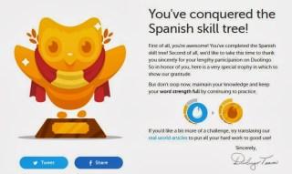 Duolingo owl