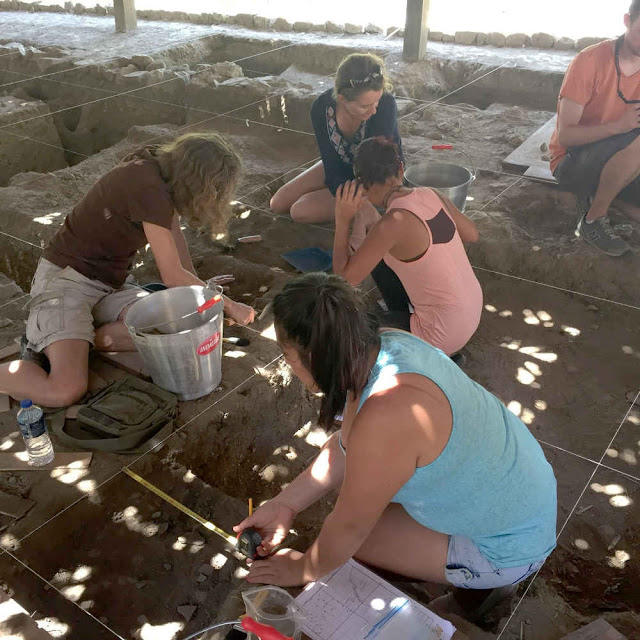 Amateur archaeologists for a day