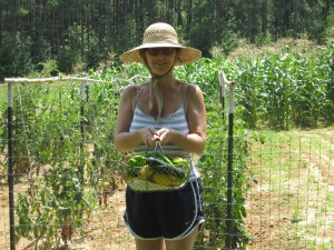 The author with the morning's bounty from the family's vegetable garden