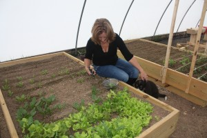 Adventures in Alternative Cooking instructor Michelle Lewis clips spinach from her green house garden