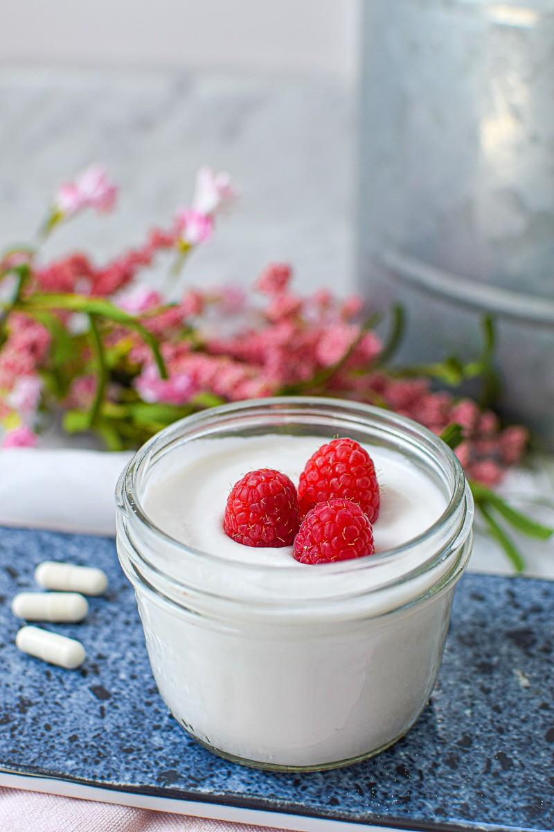 non dairy yogurt