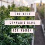 Cannabis Coach & Blog For Moms