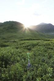 Alaska Travel AlCan Highway 14