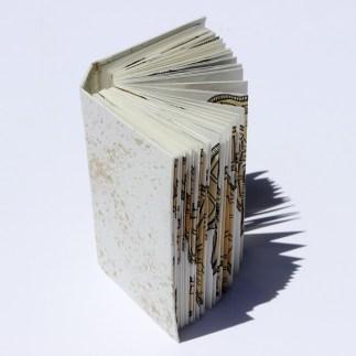 snake-book-web-02