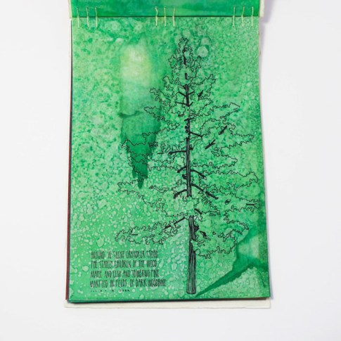 Fifty Trees artist book by Emily Longbrake 09