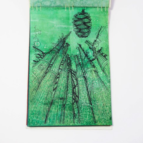 Fifty Trees artist book by Emily Longbrake 10