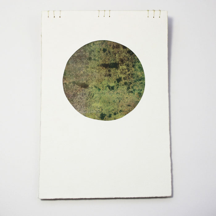 Fifty Trees artist book by Emily Longbrake 44