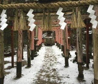 Japan 2017 travel photos 35