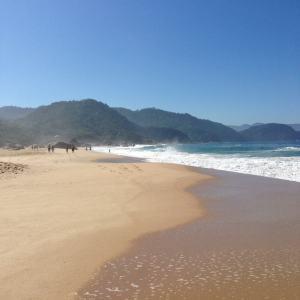 Trindade Beach, near Paraty